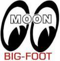 Big-Foot's Avatar