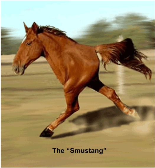 smustang